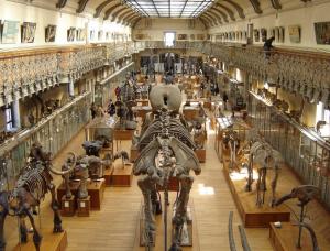 interieur museum