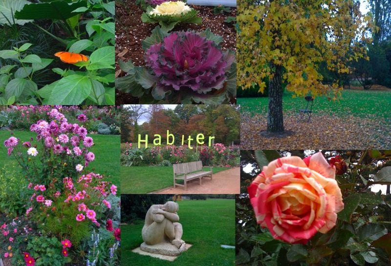 Compo Parc Floral