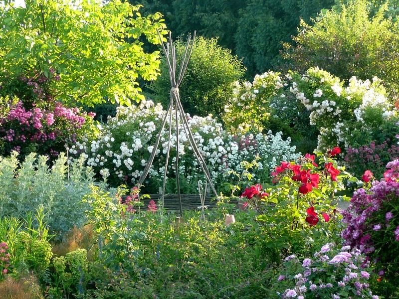 Une balade parmi les fleurs, aux Jardins de Roquelin